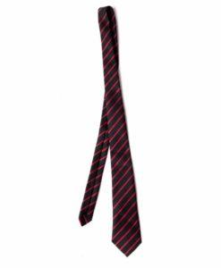 Trevelyan School Tie