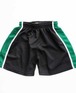 Altwood School Shorts
