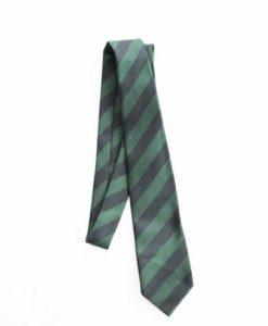 Altwood School Tie