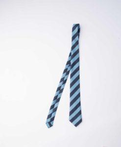Forest Bridge School Tie