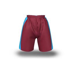 Sector Lightweight Shorts